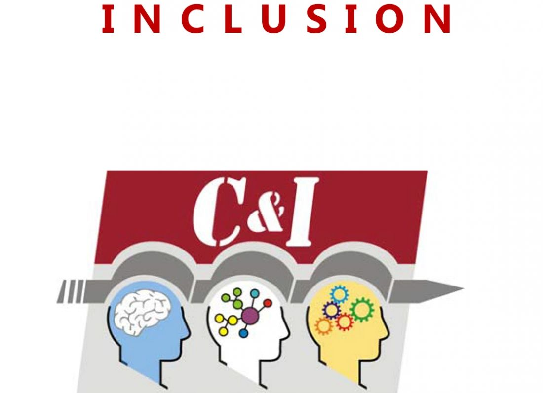 "PROYECTO EUROPEO ""COGNITION & INCLUSION"""